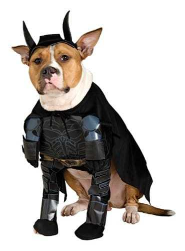batman-costume-for-dogs