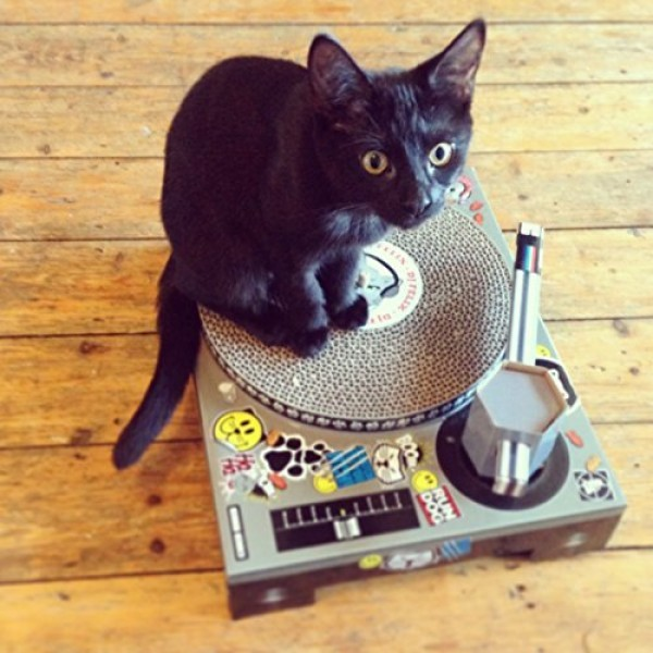 Suck-UK-Cat-Scratching-DJ-Deck-0-4