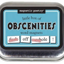 Magnetic Poetry – Little Box of Obscenities Kit – Words for Refrigerator – Write Poems and Letters on the Fridge – Made in the USA